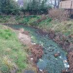 【蕨市内】見沼代用水の近況